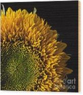 Sunflower Square Wood Print