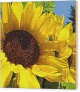 Sunflower Summer Garden Art Prints Wood Print