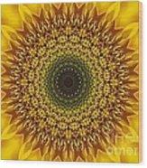 Sunflower Sunburst Wood Print by Annette Allman