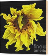 Sunflower With Curlicues Effect Wood Print