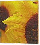 Sunflower Yellow Wood Print