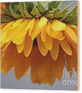 Sunflowers 6 Wood Print