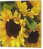 Sunflowers Wood Print by Amy Vangsgard