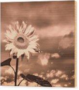 Sunflowers Wood Print by Bob Orsillo
