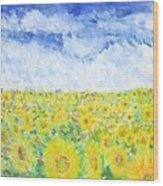 Sunflowers In A Field In  Texas Wood Print
