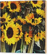 Sunflowers In Blue Bowls Wood Print