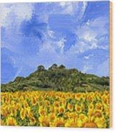 Sunflowers In Tuscany Wood Print