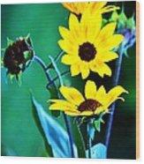 Sunflowers Portrait Wood Print