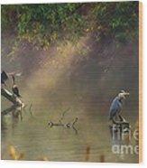 Sunglow Heron Wood Print