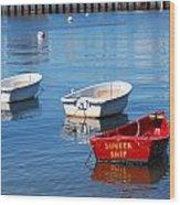 Sunken Ship Wood Print by Lorena Mahoney