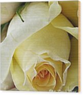 Sunkissed Yellow Rose Wood Print