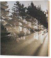 Sunlight Breaks Through The Fog Wood Print