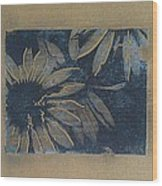 Sunlight In The Dark Wood Print