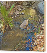 Sunlight On Andreas Creek In Indian Canyons-ca Wood Print