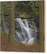 Sunlight On Bingham Falls Wood Print
