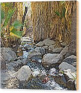 Sunlight Over Rocky Andreas Creek In Indian Canyons-ca Wood Print