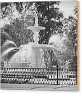 Sunlight Through Savannah Fountain With Vignette Wood Print
