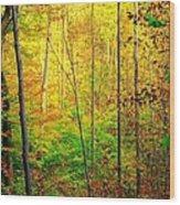 Sunlights Warmth Wood Print