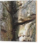 Sunlit Boulder On Shades Mountain Wood Print