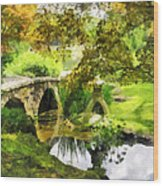 Sunlit Bridge In Park Wood Print