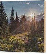 Sunlit Flower Meadows Wood Print
