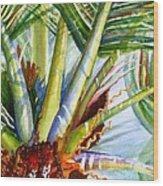 Sunlit Palm Fronds Wood Print