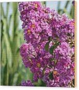 Sunlit Purple Crepe Mertle Wood Print