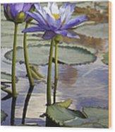 Sunlit Purple Lilies  Wood Print