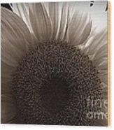 Sunlit Sepia Wood Print