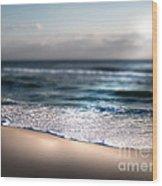 Sunlit Shore Wood Print by Jeffery Fagan