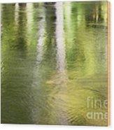 Sunlit Tree Reflections Wood Print