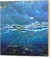 Sunlit Wave Wood Print