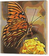 Sunlite Orange Butterfly Wood Print