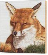 Sunnin' Red Fox Wood Print