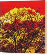 Sunnsett Wood Print