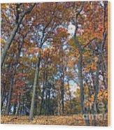 Sunny Autumn Day 3 Wood Print