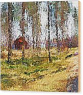 Sunny Day In April Wood Print