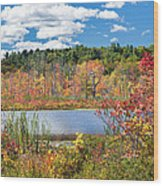 Sunny Fall Day Wood Print