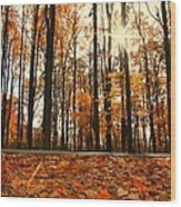 Sunny Fall Day Wood Print by Candice Trimble