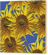 Sunny Gets Blue Wood Print