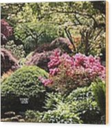 Sunny Japanese Garden Wood Print