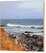 Sunny Ocean Shoreline Wood Print