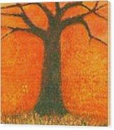 Sunny Rain Wood Print