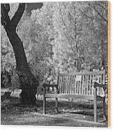 Sunny Seat Wood Print