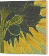 Sunny Side Up Wood Print by Cori Solomon
