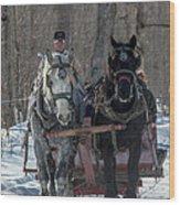 Sunny Sleigh Ride Wood Print