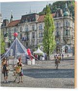 Sunny Slovenia Wood Print