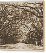 Sunny Southern Day With Old World Framing Wood Print