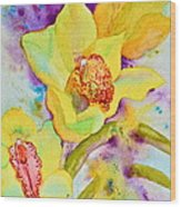 Sunny Splash Of Orchids Wood Print by Beverley Harper Tinsley
