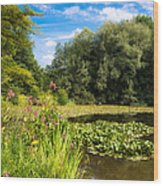 Sunny Summer Day At The Lake Beautiful Green And Blue Colors Wood Print